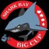 Shark Bay Cup Nova Gorica – Settembre 2012
