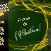 VIPbox: la casa dei giocatori di poker!
