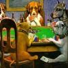 Le GIF più divertenti… applicate al poker! (parte 1)