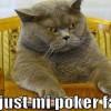 Le GIF più divertenti… applicate al poker! (parte 4)
