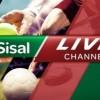 Sisal Live Channel: il primo canale dedicato alle scommesse live attivo nei punti vendita