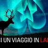 Vola in Lapponia con la nuova promo di PokerStars!