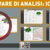 Software di analisi: come funziona ICMIZER