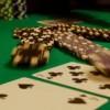 Chi sono le Star a cui piace il poker? Il caso Molly's Game