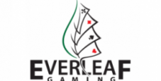 Guida a Holdem Manager su network Everleaf