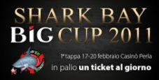 Lo Shark Bay torna nel 2011 con la BIG Cup