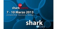 Shark Bay, Nova Gorica – Marzo 2013