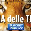 Ultimi posti disponibili per il Tana delle Tigri dal 27 al 29 marzo a Praga!