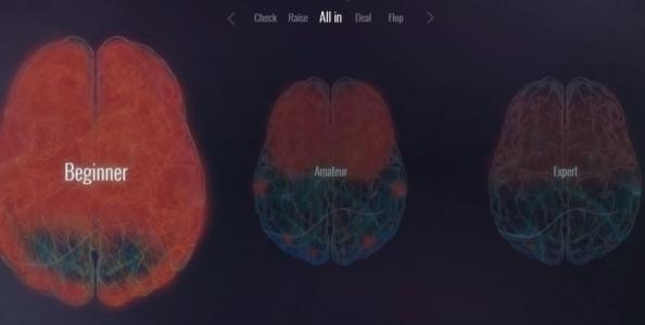 'Your Brain on Poker': le attività cerebrali dei players durante il gioco!