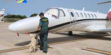 Poker player italo-kuwaitiano arrestato ad Ibiza per traffico di droga